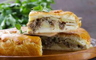 Картофельный пирог с фаршем в духовке: рецепты простой и вкусной выпечки