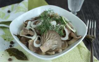 Вешенки маринованные – 7 рецептов быстрого приготовления в домашних условиях