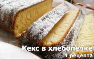 Кекс в хлебопечке — 10 рецептов простых и вкусных