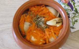 Как приготовить пельмени в горшочках в духовке по пошаговому рецепту с фото