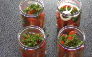 Салат из помидор с луком на зиму, рецепт с фото – wowcook.net – самые вкусные кулинарные рецепты