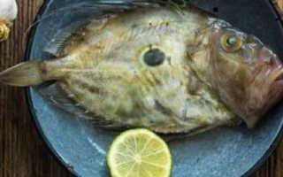 Польза и вред рыбы дори