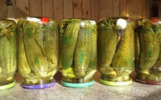Маринованные огурцы. 3 лучших рецепта вкусных хрустящих маринованных огурцов на зиму