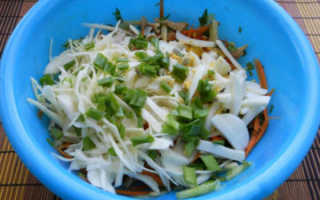 Вкусный салат из свежей капусты с яйцом – рецепт приготовления