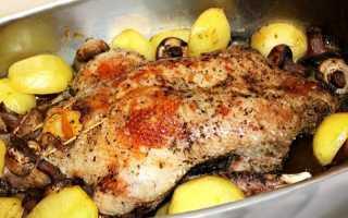 Утка с черносливом – как вкусно готовить в домашних условиях в утятнице, мультиварке или духовке