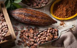 Горячий шоколад – 8 рецептов в домашних условиях