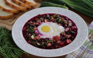 Холодные супы на лето. Рецепты супа из томатов, из свеклы, из огурца