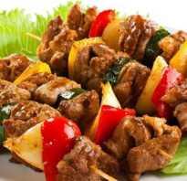 Шашлык из свинины в рукаве в духовке – самые вкусные рецепты маринада и блюда для пикника