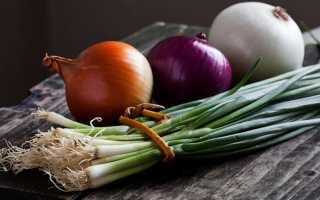 Польза печеного лука для организма, как запекать и как есть овощ, противопоказания