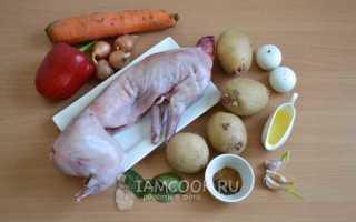 Кролик в сметане в мультиварке: рецепты приготовления с картошкой и овощами