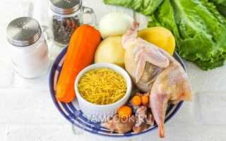 Рецепт супа из перепелки