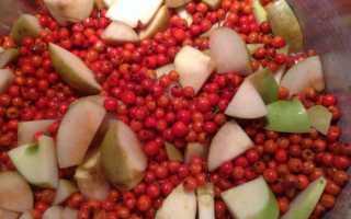 Проверенный рецепт варенья из брусники с яблоками классическое и пятиминутка, варенья из брусники с грушами на зиму или для сегодняшнего чаепития