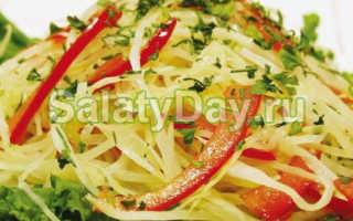 Салат из капусты с перцем болгарским – быстрый и вкусный