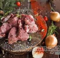 Шашлык из свинины: вкусный маринад, чтобы мясо было мягким и сочным. 15 лучших рецептов