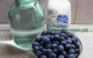 Компот из терна: приятный вкус и крепкое здоровье