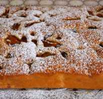 Сливовый пирог – 10 лучших рецептов пирога со сливами