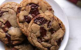Рецепты печенья на молоке для домашнего чаепития. Медовое, шоколадное, ореховое и много других рецептов печенья на молоке