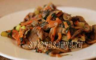 Грибы с кабачками: рецепты с фото