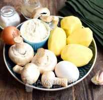 Как приготовить картофельные драники с грибами: рецепты приготовления с фото