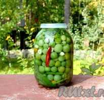 Рецепты засолки зеленых помидор на зиму