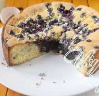 Шарлотка с черникой – пошаговый рецепт