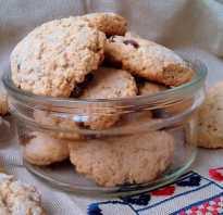 Овсяное печенье: легкие способы приготовления полезного лакомства
