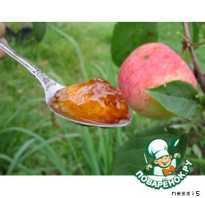 Желе из яблок на зиму – янтарная сладость! Рецепты разного желе из яблок на зиму: с желатином и без загустителей