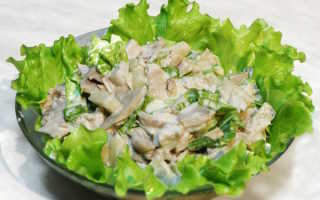 Салат с курицей и шаминьонами: особенности приготовления и разнообразные рецепты –