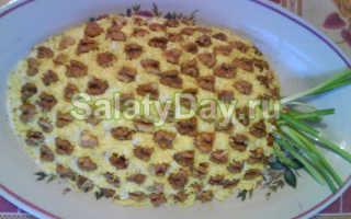 Салат с курицей и сыром. Домашние рецепты, как вкусно приготовить салаты из курицы и сыра