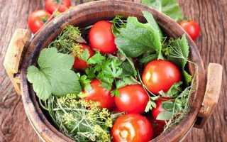 Малосольные помидоры— самые вкусные и быстрые рецепты приготовления