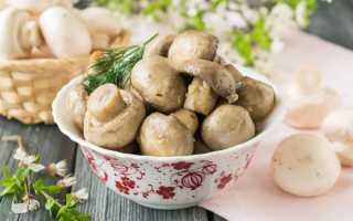 Топ 10 рецептов маринованных шампиньонов быстрого приготовления в домашних условиях на зиму