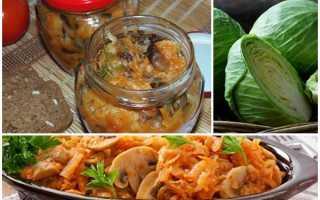 Рецепт приготовления солянки с грибами на зиму пальчики оближешь