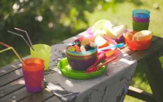 Экологичный пикник: выбираем правильную посуду