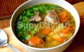 Рецепт приготовления супа из рыбных консервов в мультиварке
