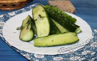 Малосольные огурцы быстрого приготовления: 8 рецептов с чесноком и зеленью