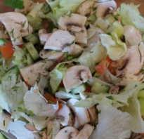 Салаты с сырыми шампиньонами: фото, рецепты приготовления шикарных блюд со свежими грибами