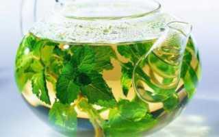 Полезные свойства и противопоказания чая с мятой, рецепты и особенности употребления