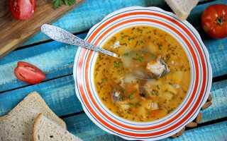 Рыбный суп — 10 рецептов приготовления