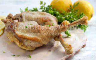 Как вкусно приготовить домашнюю курицу