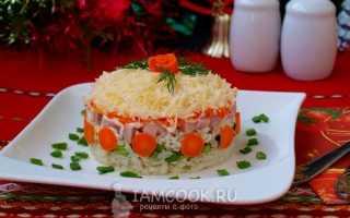 Слоеный салат с ветчиной – закуска на все случаи жизни. Рецепты слоеного салата с ветчиной, картошкой, черносливом, чипсами