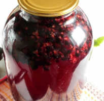 Компот из черной смородины – 10 простых рецептов на зиму