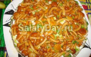 Салат с печенью и грибами: самые удачные рецепты приготовления. Готовим деликатесные салаты из печени и грибов в разных вариациях