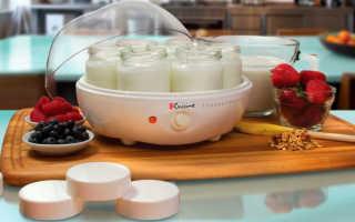 Как выбрать йогуртницу – что важно знать перед покупкой