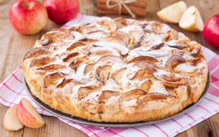 Как приготовить шарлотку с яблоками в духовке – 9 простых рецептов с фото