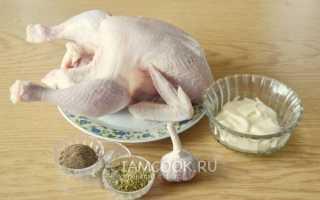 Курица с майонезом и чесноком в духовке – супер-птичка! Рецепты сочной, ароматной, нежной курицы с майонезом и чесноком в духовке