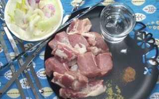Шашлык из свинины на минералке рецепт